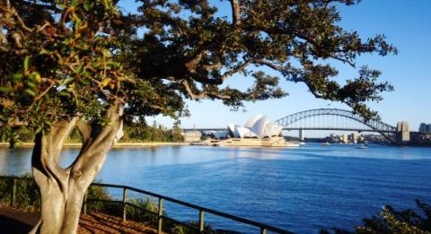 Royal Botanic Garden und Domain