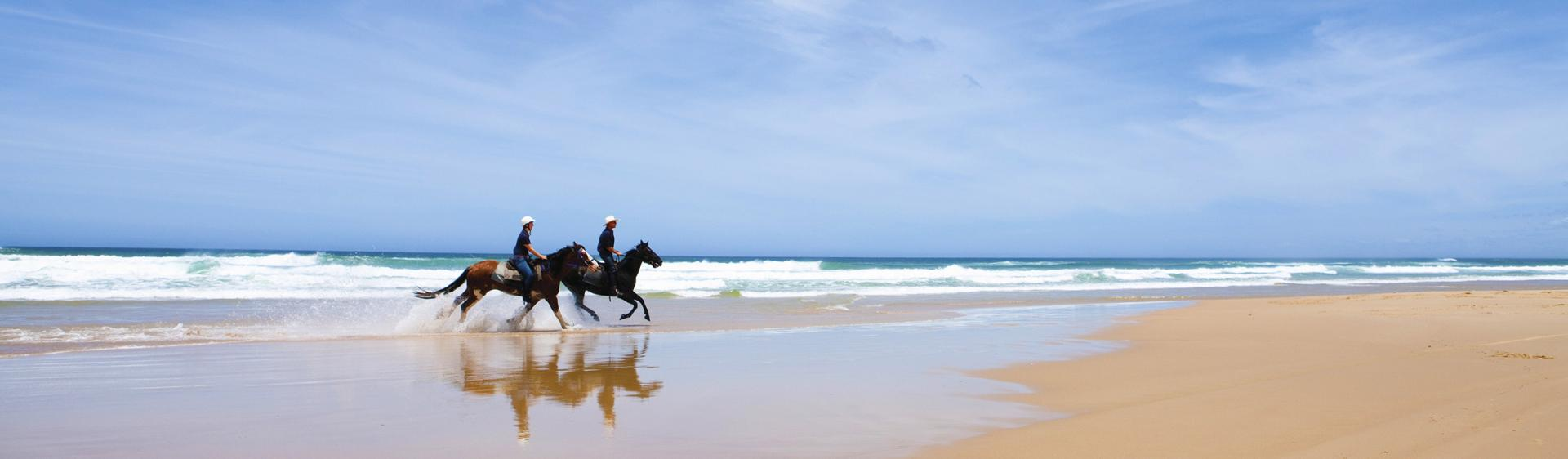 Reiten am Strand, Port Stephens