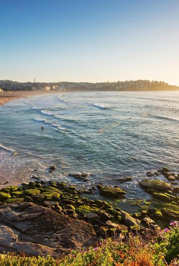 Summer in Bondi Beach, Sydney
